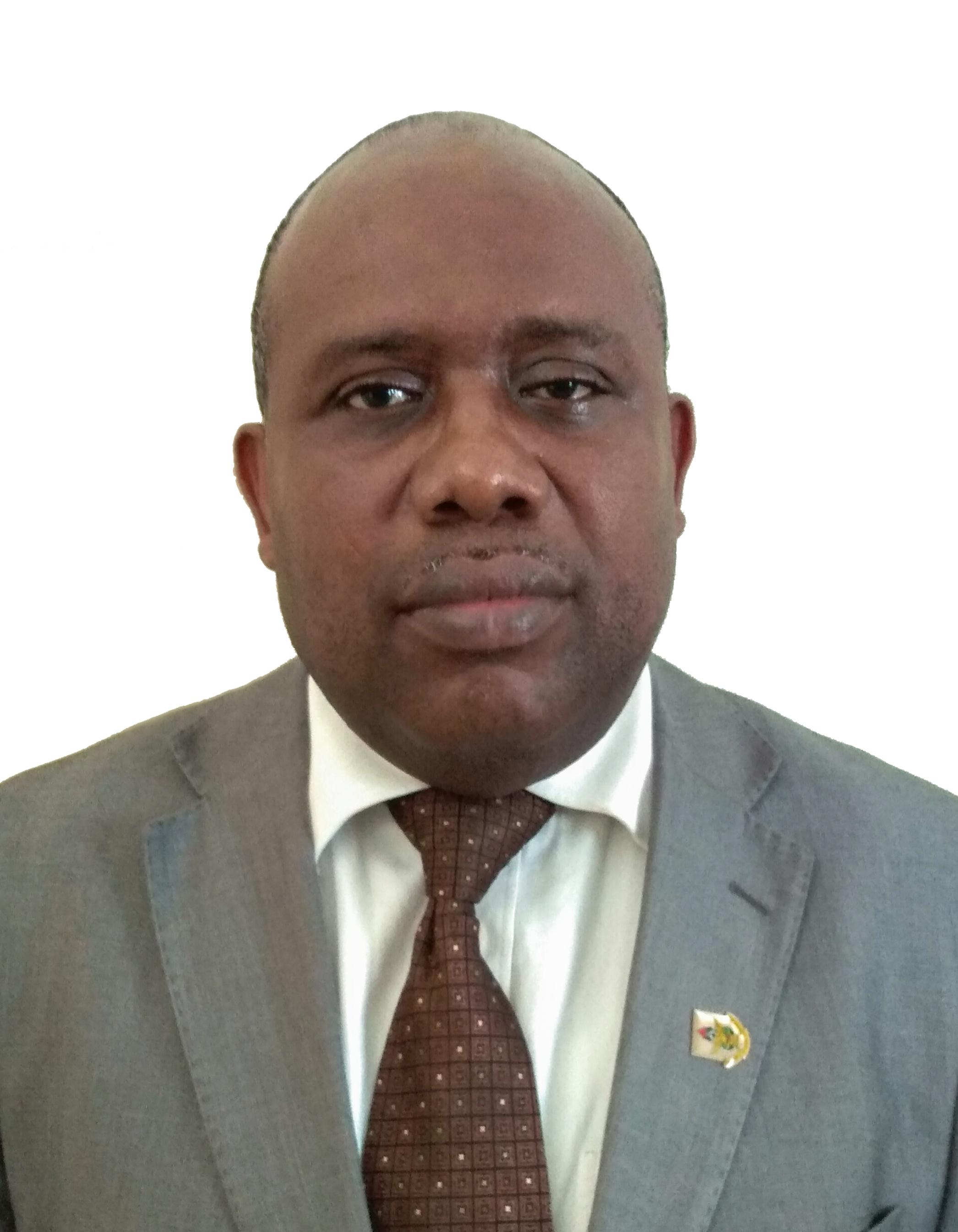 prof_Leonard_Amekudzi_passport_picture